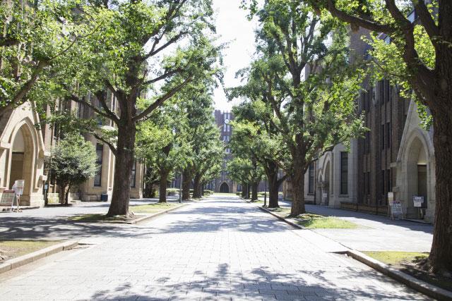 通信制高校の大学進学実積を比較