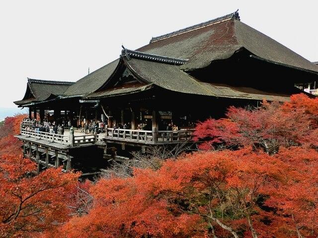 京都にある通信制高校・サポート校